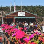 Deer Harbour Market and Store